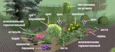 images%7Ccms-image-000043555.jpg