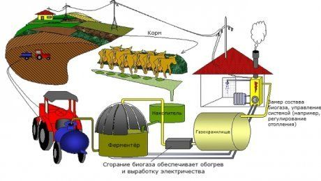 Схема биогазовая установка своими руками фото 556