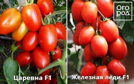 images%7Ccms-image-000046227.jpeg