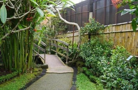 дренаж садовой дорожки