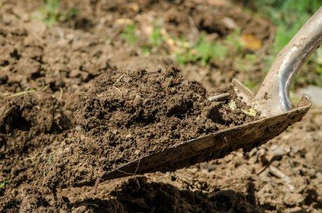 Подготовка почвы для клумбы
