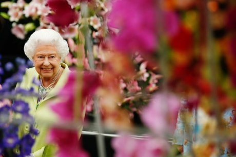 королева в саду