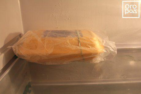 Стратификация семян в холодильнике