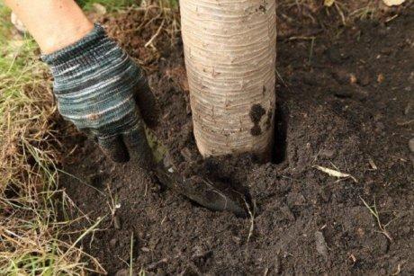осеннее перекапывание почвы