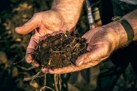 Копать ли огород осенью