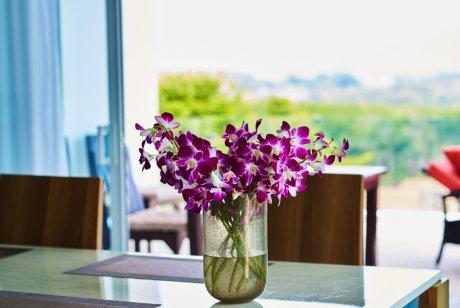 Срезанные орхидеи в вазе
