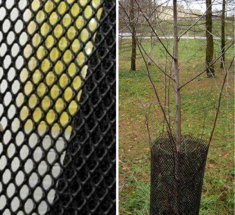 Такие сетки используют для защиты стволов деревьев от вредителей