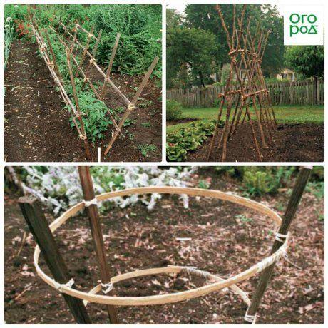 необычные способы подвязки помидор