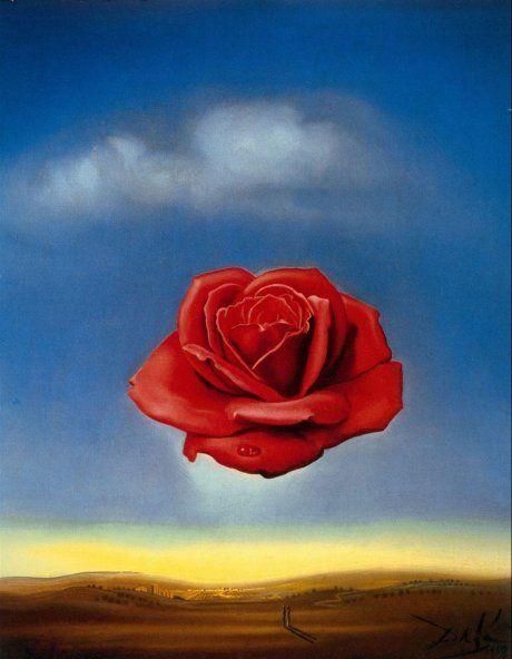 Медитативная роза. С. Дали
