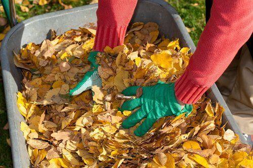 Уборка листвы в саду