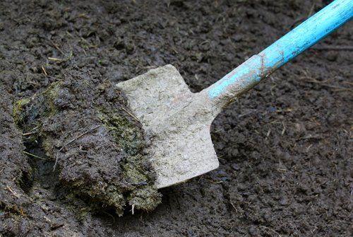Органические удобрения согревают почву и обогощают ее