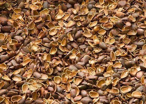 Ореховая скорлупа для мульчи