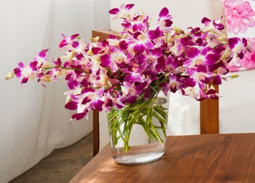 Орхидеи в срезке