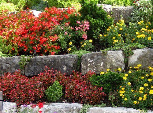 Разноуровневая посадка цветов