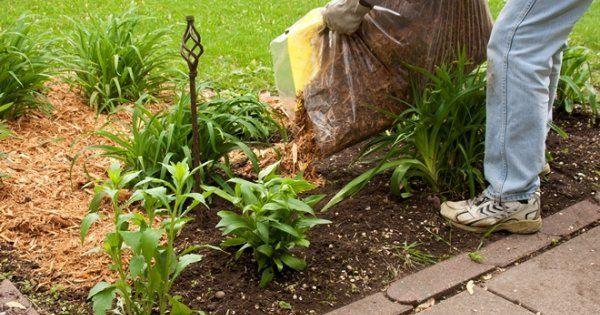 Чем полезна торфяная мульча для огорода
