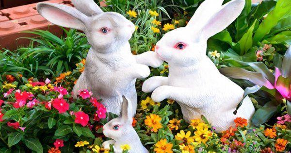 images|cms-image-000035027 Поделки из гипса своими руками: для детей и для сада
