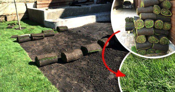 Как хранить рулонный газон