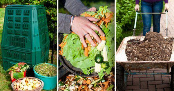 Из чего можно готовить компост