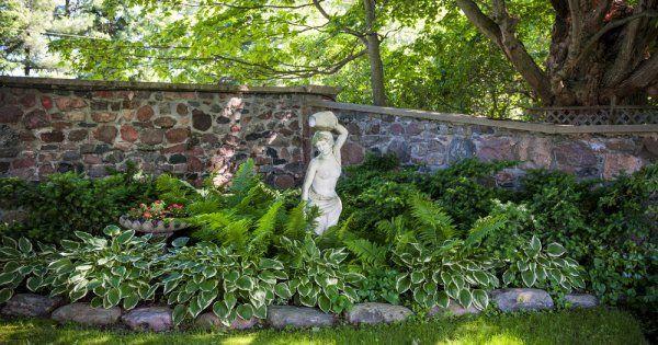 Что сажать в тени сада 20