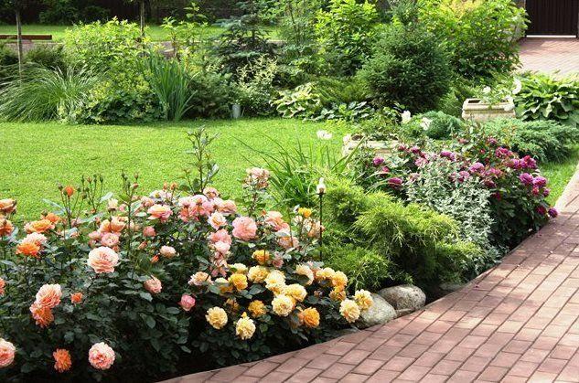 рабатка один из видов клумбы дизайн участка огородru
