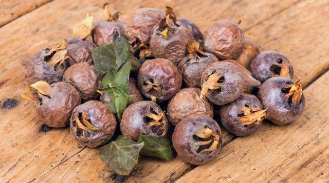 Плоды этого вида мушмулы нельзя употреблять в пищу сразу после сбора