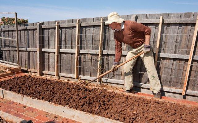 Подготовка грядки для капусты