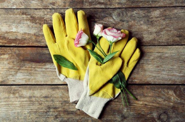 наливные перчатки