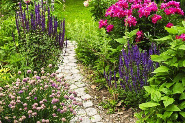 садовая дорожка прованс