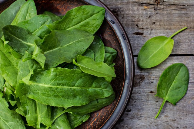 fresh sorrel leaves on a plate, the plate is on the old boards