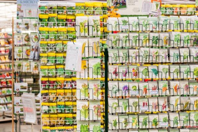 Семена в магазине