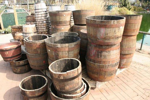 Старые бочки для выращивания картофеля