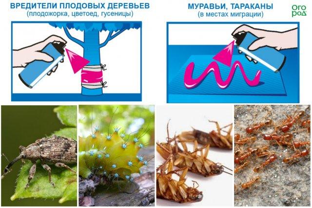 Способы применения клея-аэрозоля от насекомых