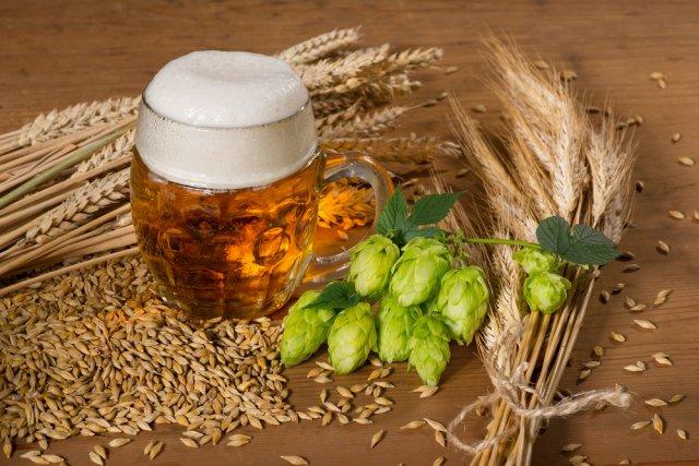 хмель и пиво