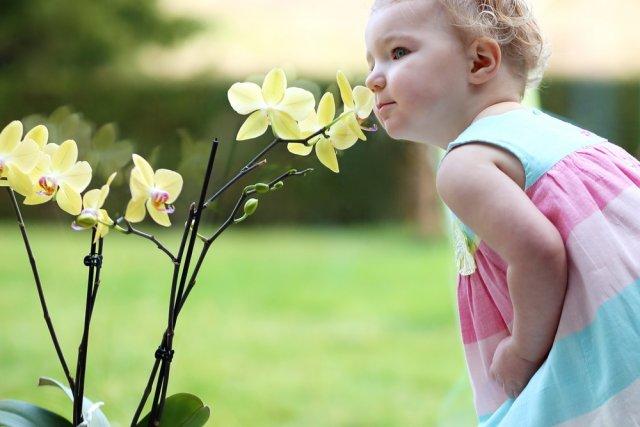 Девочка нюхает цветки орхидеи