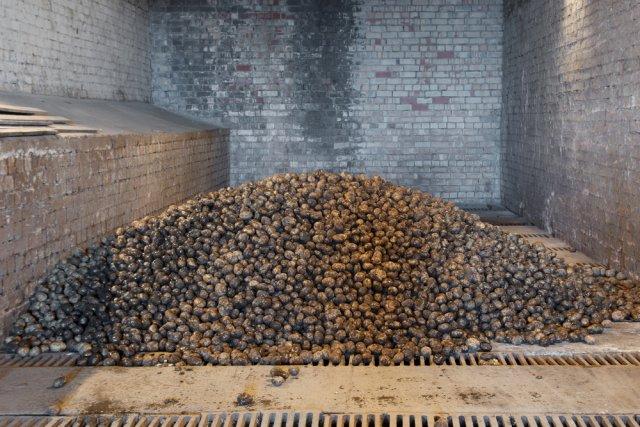 картошка в погребе