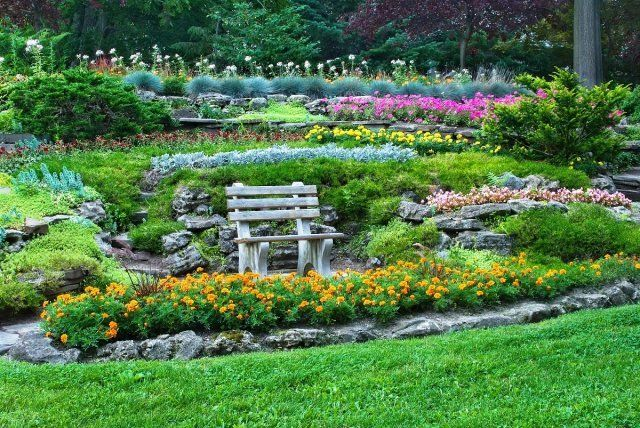 бордюр, клумба, цветы, сад