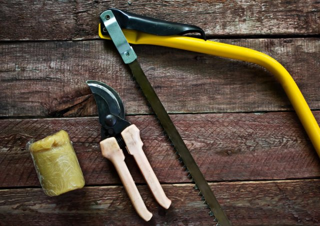 Инструмент для дачных работ