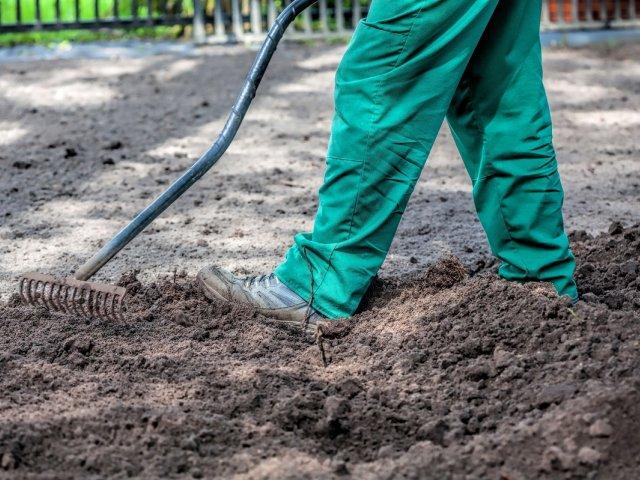 Почва для кустарника