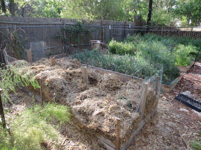 Соломенные гряды для картофеля
