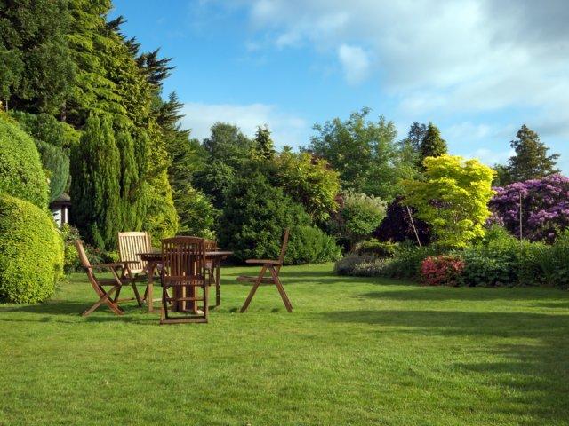 газон и отдых