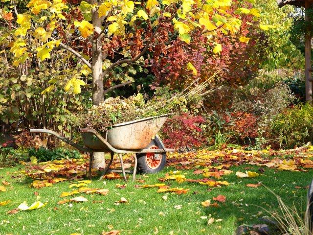дела в саду в октябре