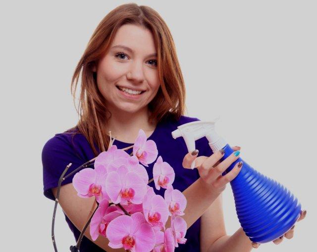 Опрыскивание орхидеи