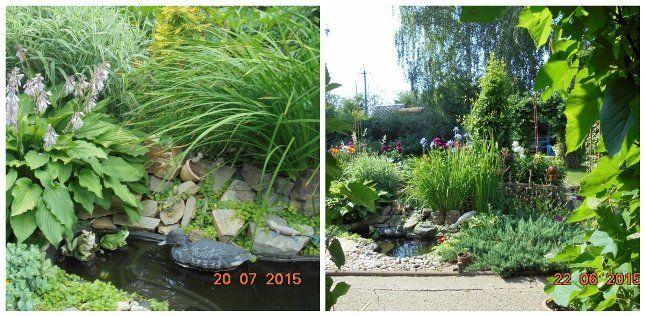 Маленкий садовый пруд