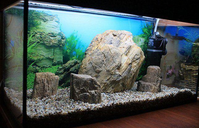аквариум камни в аквариуме внутренний фильтр фото