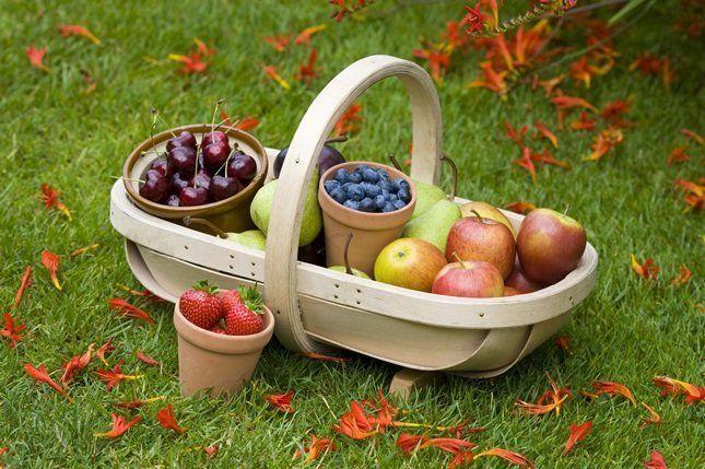 Лучшими антиаллергическими фруктами считаются печеные яблоки и груши зеленого цвета