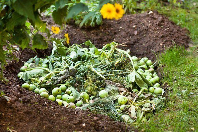 Под анаэробный компост, чтобы не растекалась жижа, готовят неглубокую яму