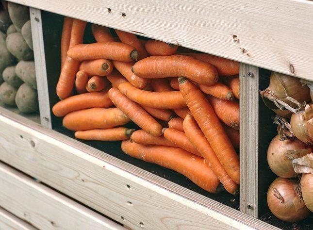 Овощи хорошо сохраняются в подвале при умеренной влажности и температуре