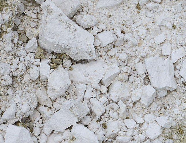 Доломитовый щебень подходит не для всех растений, поскольку подщелачивает почву