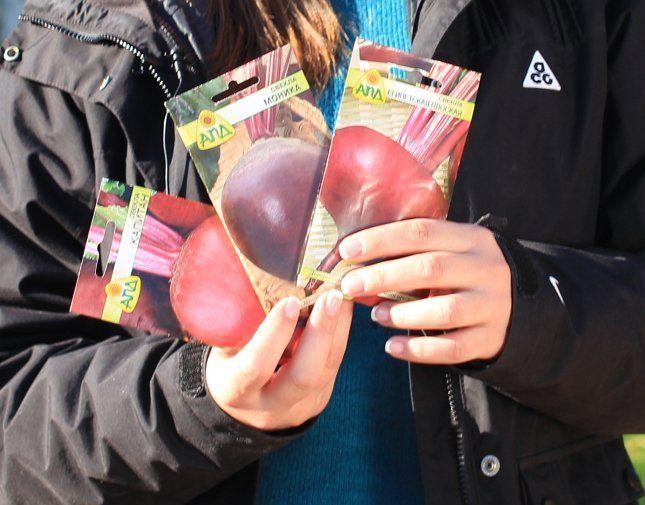 Семена свеклы в пакетиках