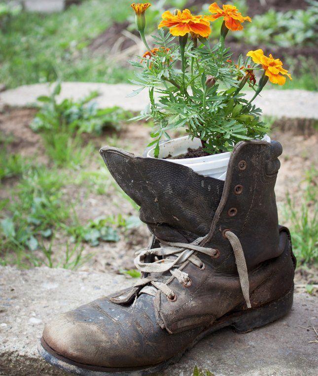 цветы растут в старом ботинке фото